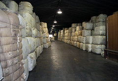 Inside wool warehouse