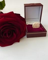Say yes! (KelJB) Tags: valentinesday romance lovehearts love rose valentine