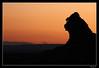 King Kong al atardecer (SerYey_ ( Sergio Franco )) Tags: sunset contraluz atardecer silueta puesta seryey sergiofranco wwwsergiofotografiacom
