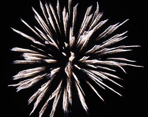 WBC Firework 2