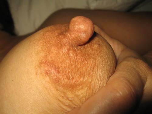 free search big boobs tits pics: bigtits