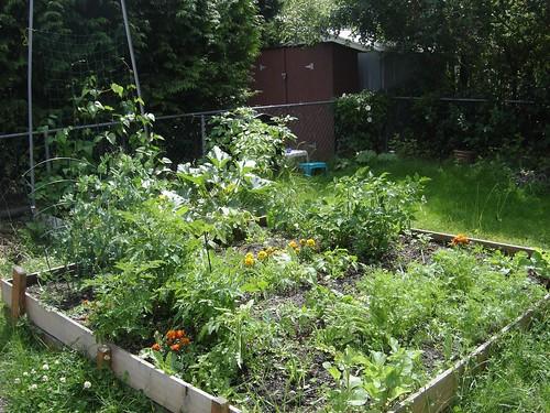 garden_full