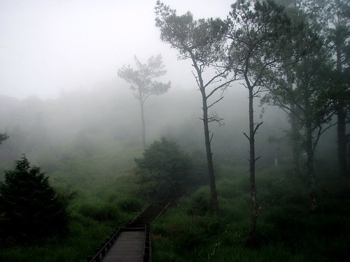 2009-07-12_71