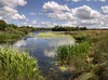 England: Northamptonshire - Lazy Day, Dream Away (Tim Blessed) Tags: uk trees sky nature water clouds reflections reeds landscape countryside scenery lakes wetlands ponds singlerawtonemapped