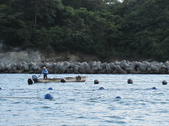 IMG_0959 (amyarchivist) Tags: japan boat matsushima