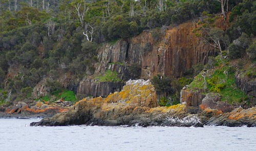 Blackman's Bay Coastline