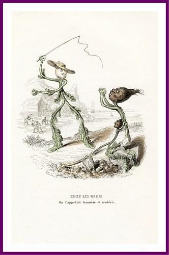 022-Drôleries végétales, ou L'Empire des légumes- Pierre Amédée Varin
