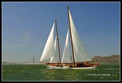 The Perfect Day (tom911r7) Tags: sanfrancisco california leica water sailboat bay eros schooner pointrichmond vlux1 bodle tom911r7 thomasbrichta sfbaywoodenboats