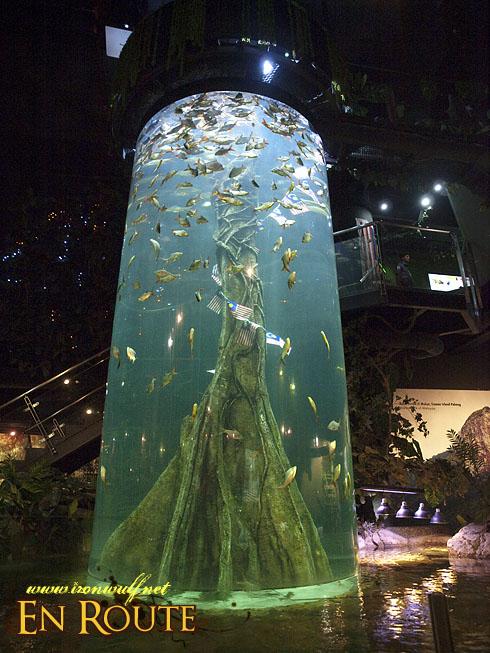 Aquaria KLCC Malaysian Rainforest