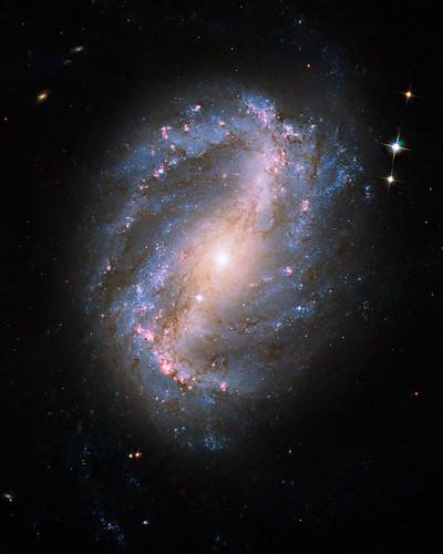 Incredible new Hubble pix: Barred Spiral Galaxy NGC 6217