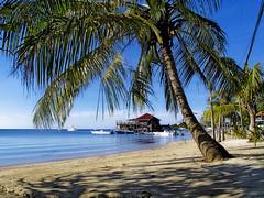 Honduras, Roatan : West End #1 (foto_morgana) Tags: beach america boats coast honduras roatan westend holydays centralamerica bayislands 5photosaday islasdelabahia 'gettyvacation2010'