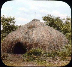 Grass hut (The Field Museum Library) Tags: africa expedition shelter 1906 mammals 1905 colonialism mountkenya lanternslide britisheastafrica carlakeley zoologyexpedition handcoloredglasslanternslide