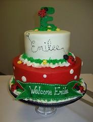 Emilee ladybug cake