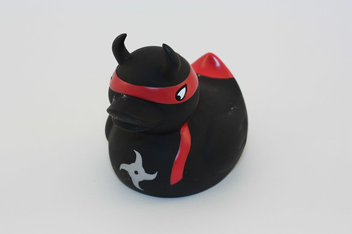 Ninja duck!