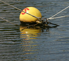 OLD BUOYS  2 (VolVal) Tags: christchurch reflection water dorset buoy buoyant