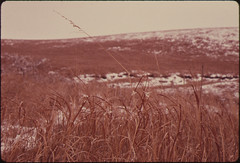 View of the Konza Prairie, 1,000 Acres of Virgin Tallgrass Prairie near Manhattan, Kansas, in the Winter Showing a Typical Overcast Sky...02/1975 (The U.S. National Archives) Tags: winter snow cold rural countryside country hill kansas prairie acres tallgrass konza environmentalprotectionagency documerica usnationalarchives nara:arcid=557196