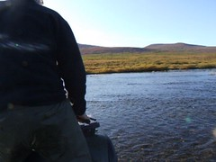 Fording the River (Travis S.) Tags: water alaska bar river movie video wake crossing jake bumpy clip riding atv nome survey tundra gravel fording southhill gravelbar allterrainvehicle 6wheeler sewardpeninsula roughride stewartriver southtosouth stewartrivericepatchsurvey