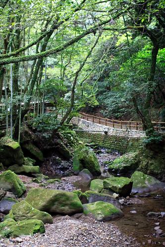 08.10 Jigenji Park - Kagoshima 6