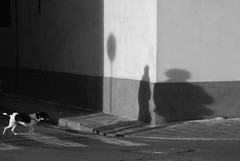 I'll be your shadow. (pchweat) Tags: road street light shadow italy corner italia pisa footpath d80 18135mm 18135mmdx