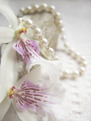 She was once here (AnnuskA  - AnnA Theodora) Tags: pink light brazil white orchid paran beautiful rock stone necklace soft bokeh details pearls softfocus delicate londrina pearlsnecklace miltoniasp
