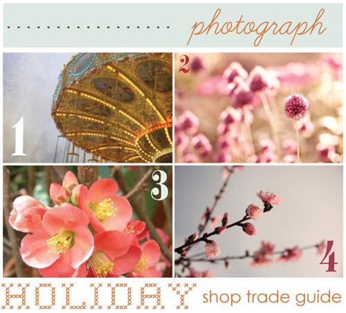 trade guide: photograph.
