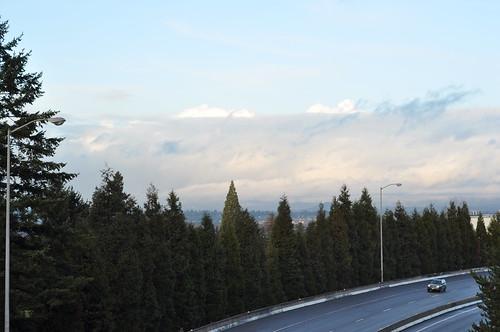 a Portland vista
