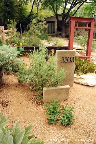 Wendy Brennan's garden