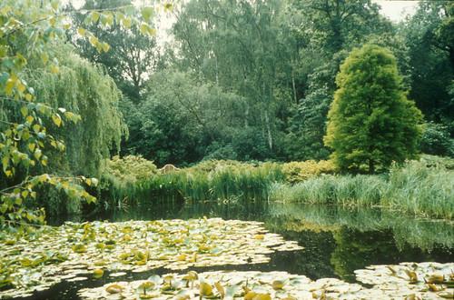 Isabella Pond
