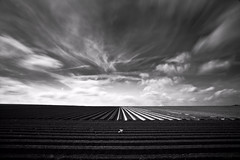 Countryside, variation 6, near Titz, 2011. (Frank Toepfer) Tags: sky blackandwhite countryside longexposuretime nd100