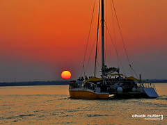 Catamaran at Sunset (Chuck Cutler) Tags: sunset red orange sun lake water arlington sailboat landscape boat dallas nikon marine sailing texas scenic explore catamaran boating sail lewisville lakelewisville d90 nikond90 chuckcutler