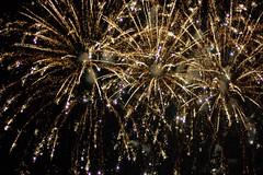 Fireworks! (GirlOnAMission) Tags: summer robin fireworks 4thofjuly 2009 psu