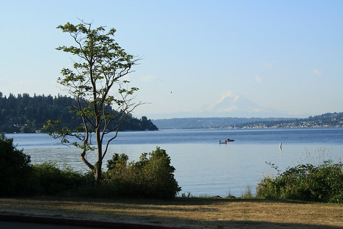 View from Seward Park