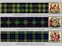 campbell tartans