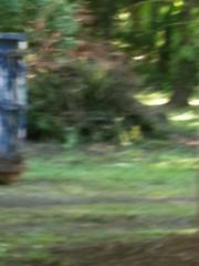 IMG_0028 (iLivehere Quad Cities) Tags: island east campbells moline