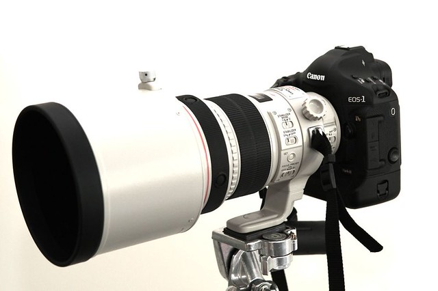 Canon EOS 1Ds Mark III met Canon EF 200mm 1-2 L IS USM