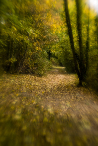 Fort Brockhurst Walk. Plastic Optic, f/4, Lensbaby Composer