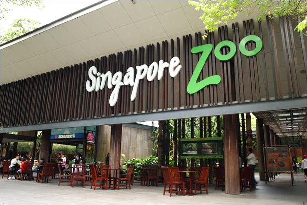 singapore-zoo-entrance