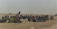 Desert Storm Iraqi Prisoners