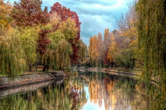 Bega - Timisoara (AragianMarko) Tags: park autumn trees fall colors leaves photoshop canal nikon adobe romania toamna reflexion hdr timisoara banat cs3 bega parcul timis d90 jesen copiilor markoaragian outstandingromanianphotographers