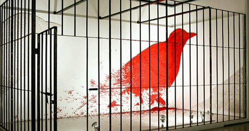 ook deze vogel zit in een kooi