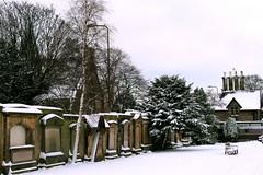 Edinburgh in Snow (Martin Rimmer) Tags: park street trees winter people snow scotland snowman edinburgh meadows snowball sleigh grange arthursseat
