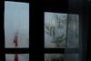 Misty Morning (Maulindu Chatterjee) Tags: india rinchenpong westsikkim kaluk easternhimalayas