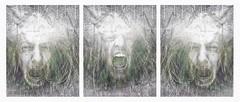 Exasperation (Vanessa Vox) Tags: exasperation emotions collage intheflowofnews selfies selfportraits vanessavox triptychs
