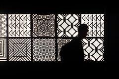Les Silhouettes (Brînzei) Tags: mitakon nikkor105mmf25 nikon sonynex7 zhongyilensturboii manualfocus nightwatch people silhouette windows ★