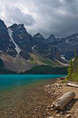 Along the shore of Moraine Lake,  Banff National Park (pa_cosgrove) Tags: mountain lake canada mountains green nature landscape nationalpark log aqua cyan wideangle alberta scree banff banffnationalpark morainelake canadianrockies canoneosd60 sigma20mm parkcanadian