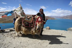 Yamdrok Lake, old Tibetan (blauepics) Tags: china yak mountains landscape see asia earth tibet berge landschaft earthasia
