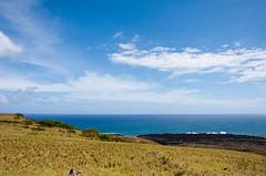 Can't get enough of you. (Michael Schoelen) Tags: ocean blue sea brown green beach water grass canon hawaii scenery waves maui hana di hi landscpae tamron beautifulview h20 1735 tamron1735 50state 50thstate 40d canon40d