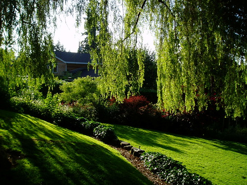 Hale Garden Willow Lawn