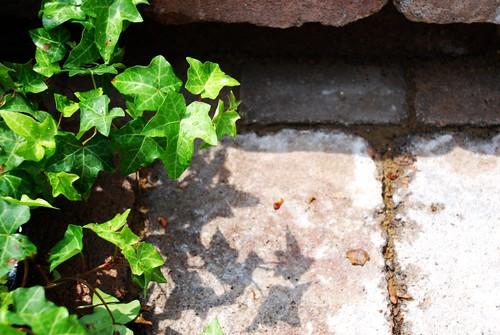 Terrace Garden Cobblestone Steps