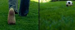 Das Betreten der Rasenfläche ist verboten!